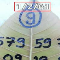 เลขดังเลขเด็ด ใบโพธิ์ งวดวันที่ 1/02/61