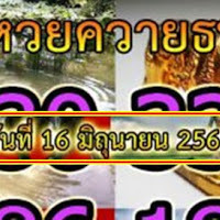เลขดังเลขเด็ด ควายธนู งวดวันที่ 16/06/61