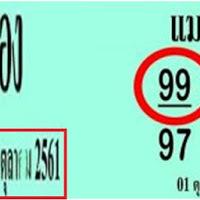 เลขเด็ด หวยเเมวมอง 2 ตัวล่างแม่นๆ งวดวันที่ 16/10/61 ผลงานดีเข้าตรงๆ