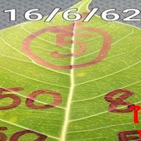 หวยใบโพธิ์ 2-3 ตัวบน-ล่าง งวดวันที่ 16/6/62