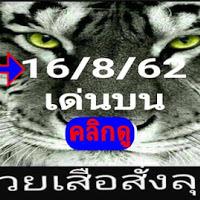 มาเเล้ว  หวยซองเสือสั่งลุย แนวทางเลขเด่นบน งวดวันที่ 16/8/62